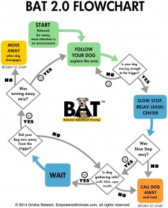 BAT2.0-Flowchart-VERTICAL