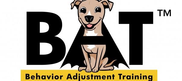 """Behavior Adjustment Training 2.0"" Book"