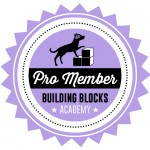 Building Blocks Academy