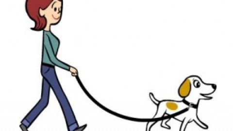 BAT Leash Skills – How to Stop Pulling Your Dog