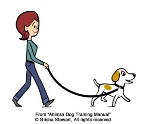 Your dog can walk ahead of you, as long as the leash is loose.