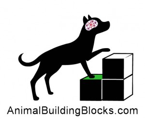 Animal Building Blocks Academy