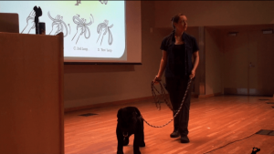 BAT-Alaska-seminar-2015