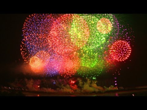 Fireworks, Thunder, and Scary Sounds: Training and Survival Tips